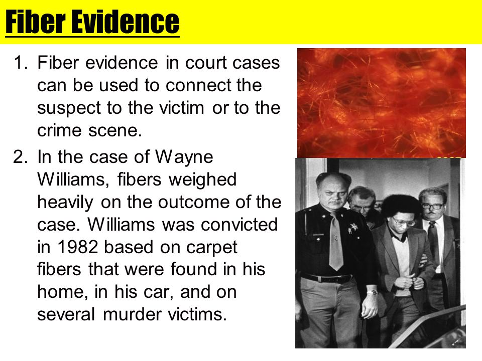 Fiber Evidence Fiber evidence in court cases can be used to connect the suspect to the victim or to the crime scene.