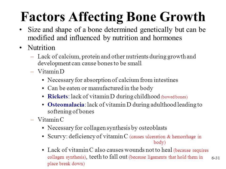 Factors Affecting Bone Growth