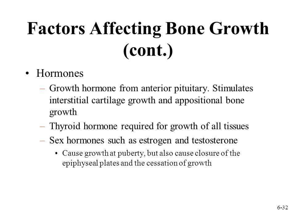 Factors Affecting Bone Growth (cont.)