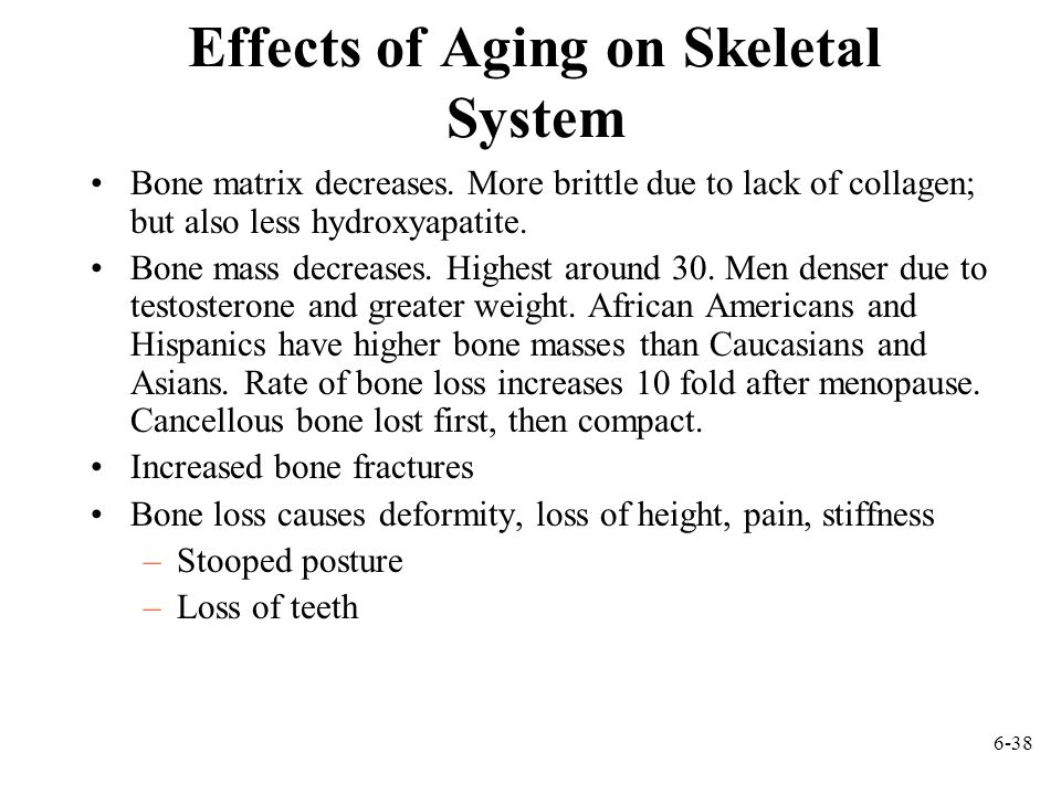 Effects of Aging on Skeletal System