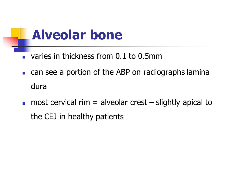 Alveolar bone varies in thickness from 0.1 to 0.5mm