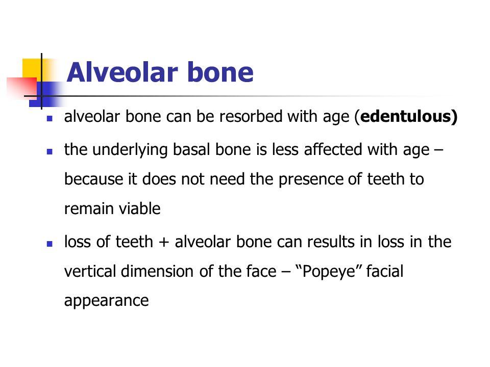 Alveolar bone alveolar bone can be resorbed with age (edentulous)
