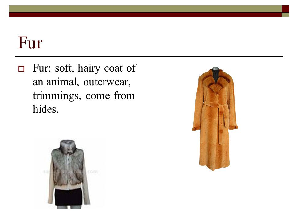Fur Fur: soft, hairy coat of an animal, outerwear, trimmings, come from hides.