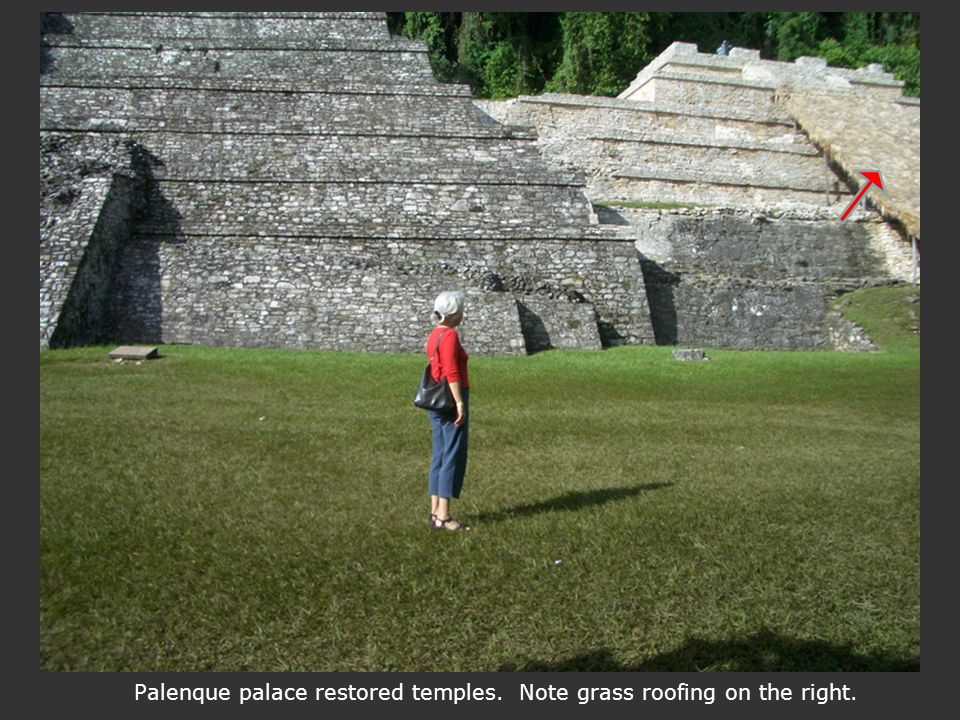 Palenque palace restored temples. Note grass roofing on the right.