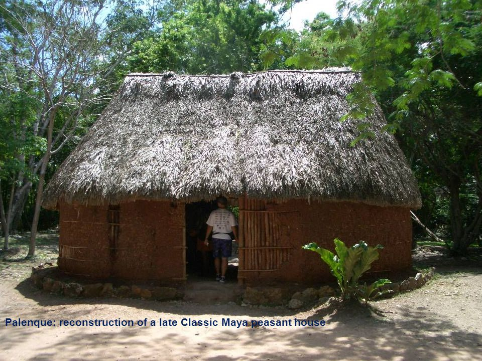 Palenque: reconstruction of Late Classic Maya peasant house