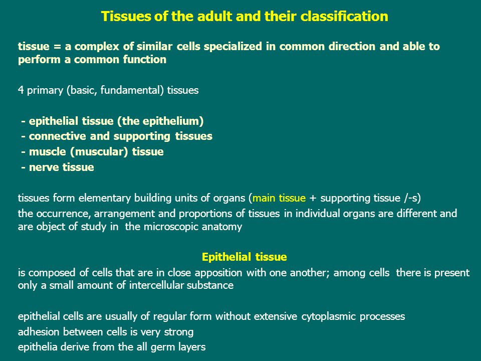 Tissues of the adult and their classification