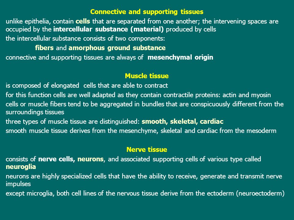 Connective and supporting tissues