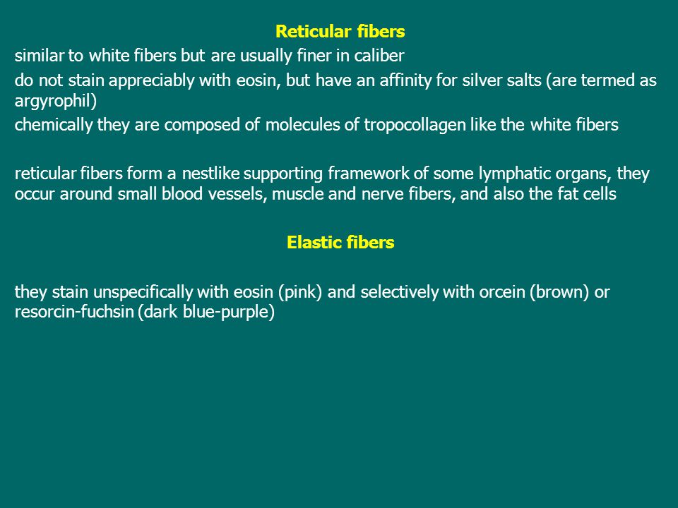 Reticular fibers similar to white fibers but are usually finer in caliber.
