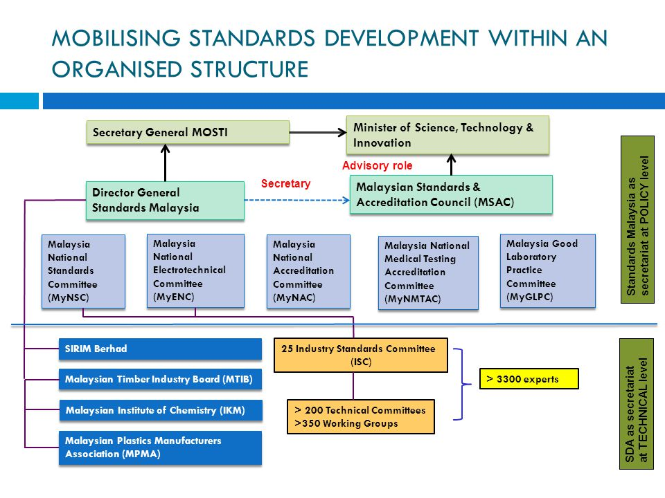MOBILISING STANDARDS DEVELOPMENT WITHIN AN ORGANISED STRUCTURE
