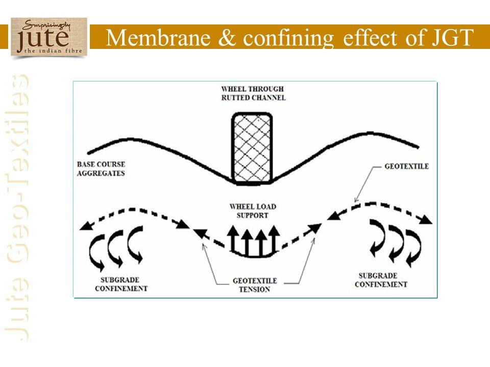 Membrane & confining effect of JGT