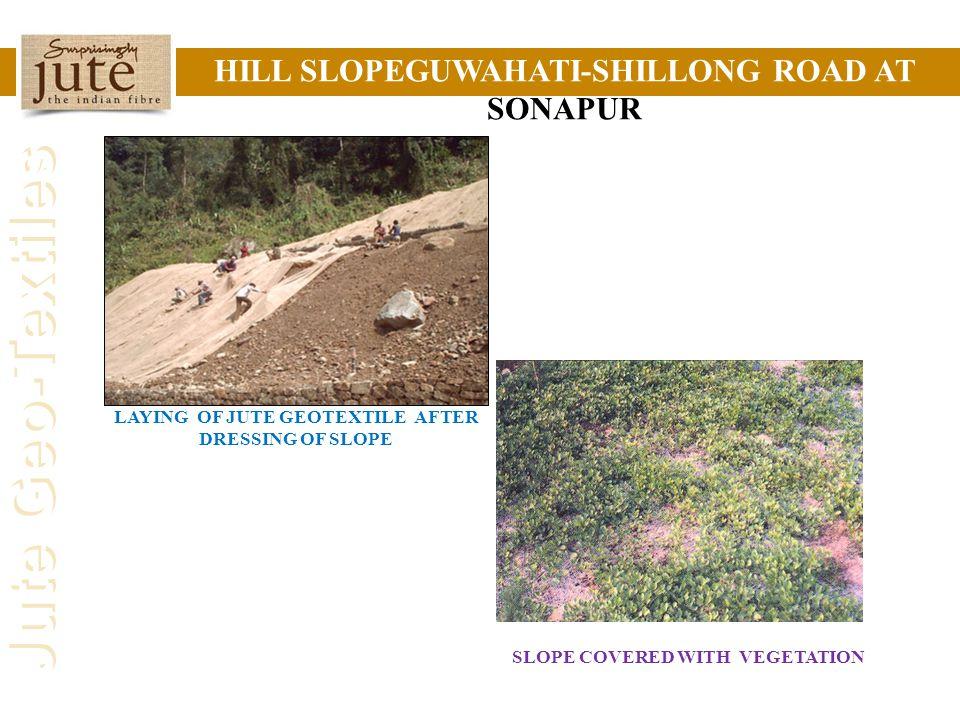 HILL SLOPEGUWAHATI-SHILLONG ROAD AT SONAPUR