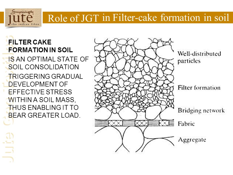 in Filter-cake formation in soil Role of JGT