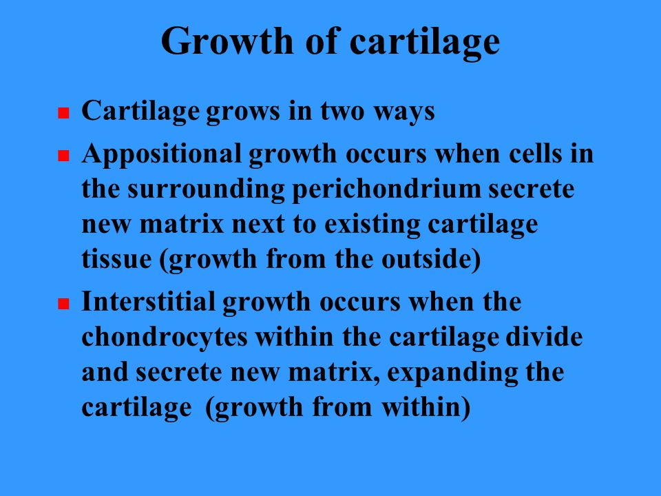 Growth of cartilage Cartilage grows in two ways