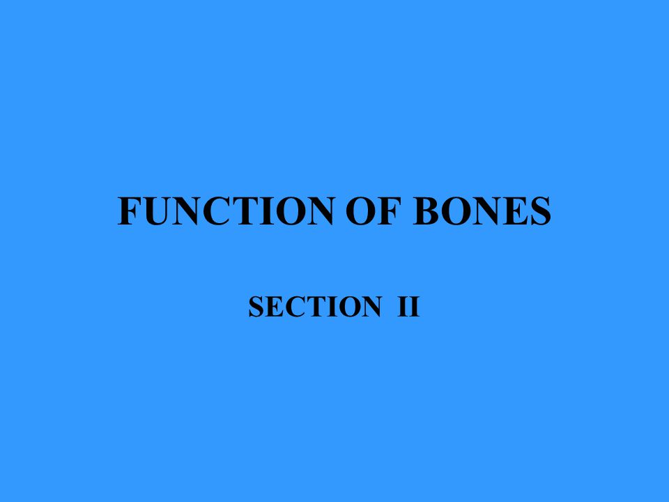 FUNCTION OF BONES SECTION II