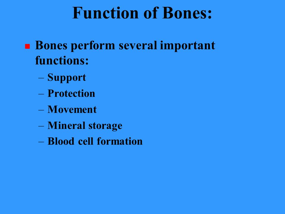 Function of Bones: Bones perform several important functions: Support