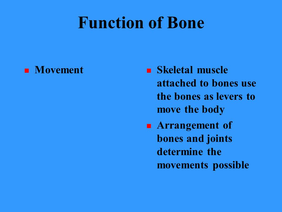 Function of Bone Movement