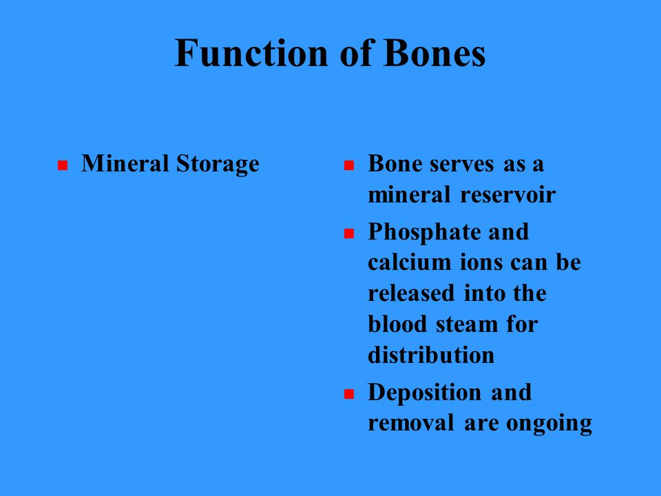 Function of Bones Mineral Storage Bone serves as a mineral reservoir