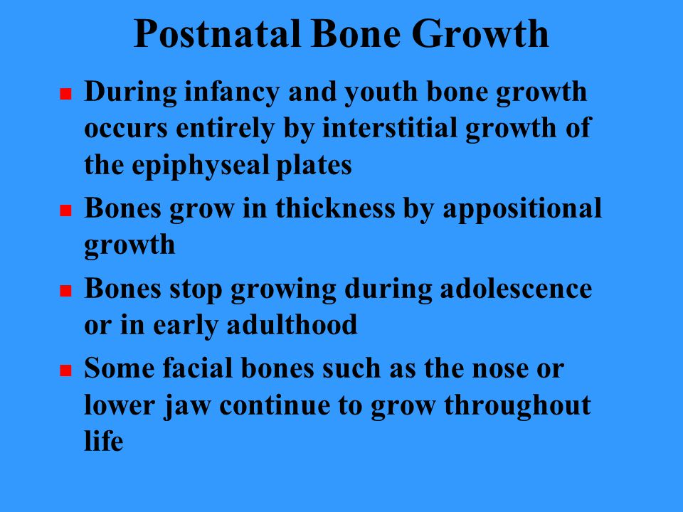 Postnatal Bone Growth During infancy and youth bone growth occurs entirely by interstitial growth of the epiphyseal plates.