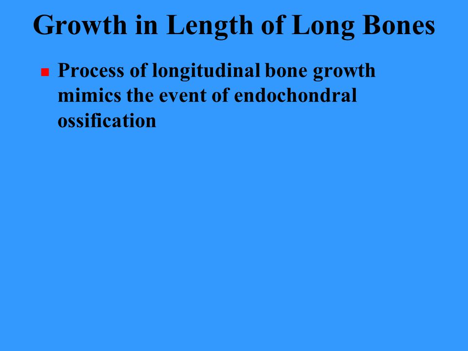 Growth in Length of Long Bones