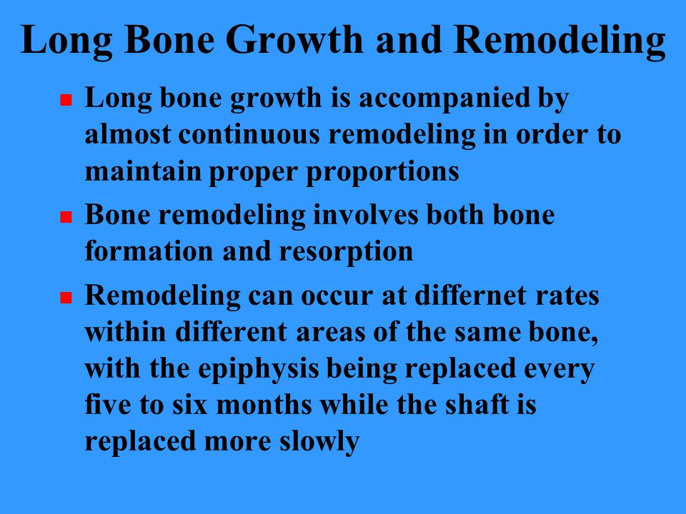 Long Bone Growth and Remodeling