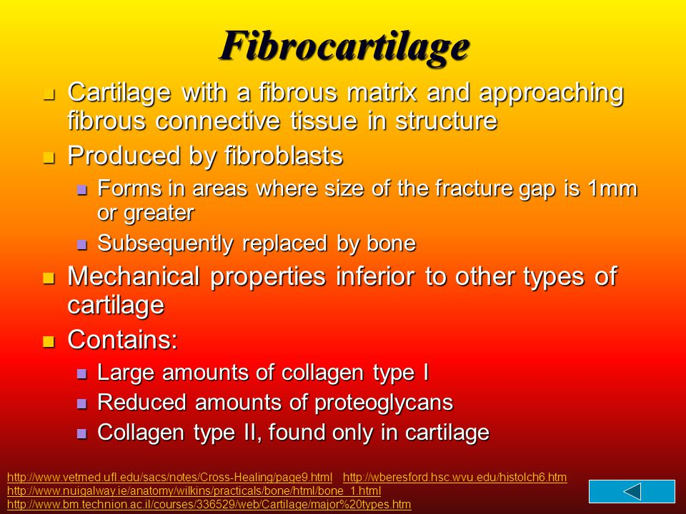 Fibrocartilage Cartilage with a fibrous matrix and approaching fibrous connective tissue in structure.