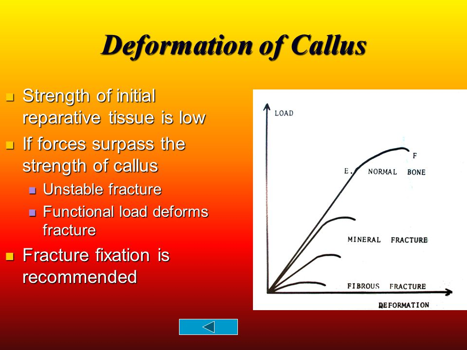 Deformation of Callus Strength of initial reparative tissue is low