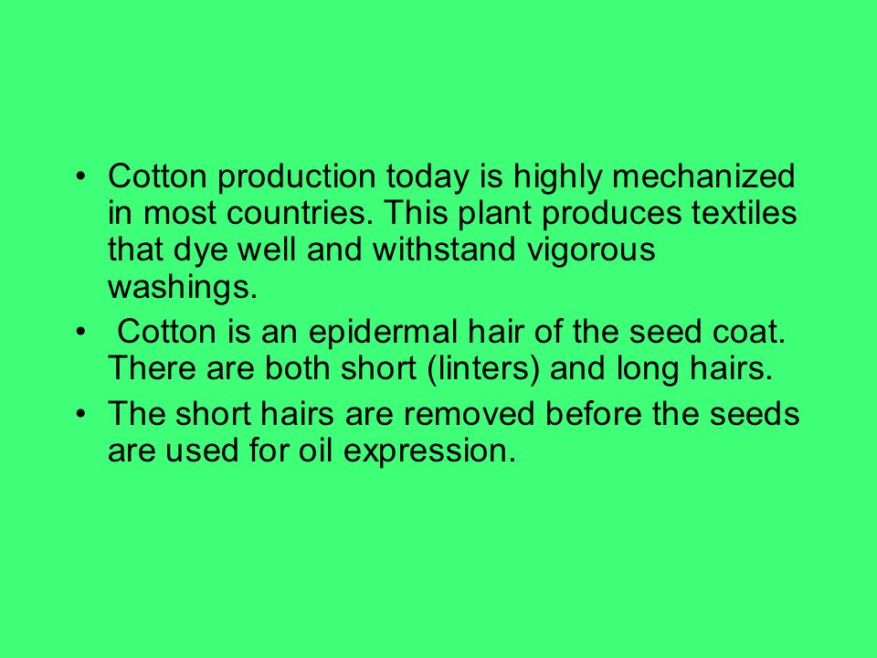 Cotton production today is highly mechanized in most countries