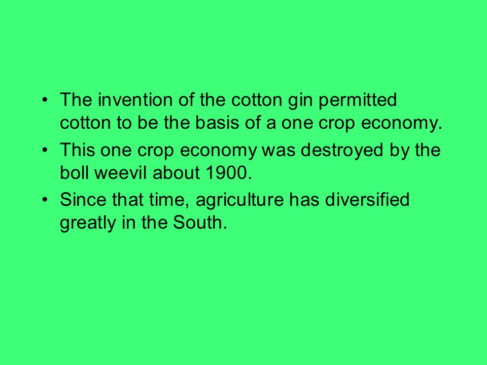 The invention of the cotton gin permitted cotton to be the basis of a one crop economy.