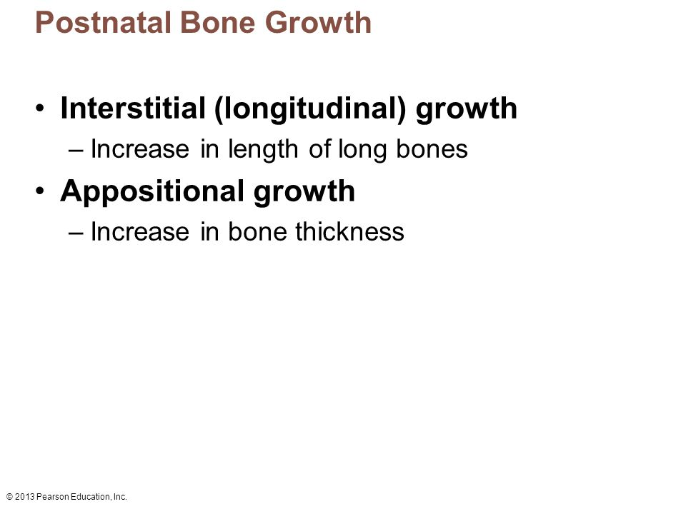 Interstitial (longitudinal) growth Appositional growth