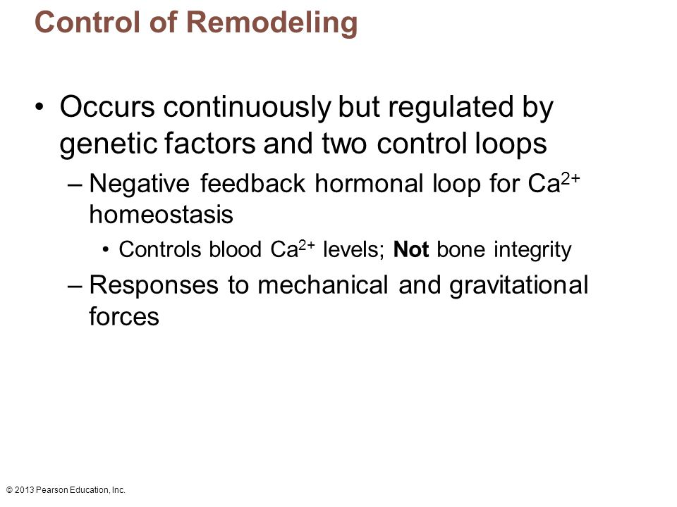 Control of Remodeling Occurs continuously but regulated by genetic factors and two control loops.