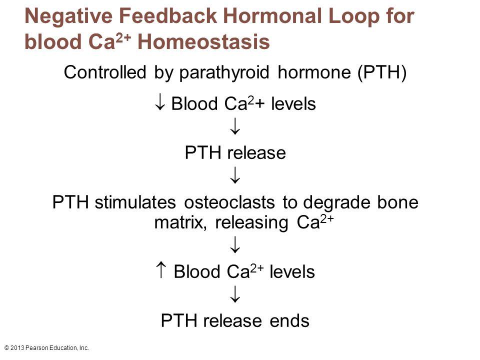 Negative Feedback Hormonal Loop for blood Ca2+ Homeostasis