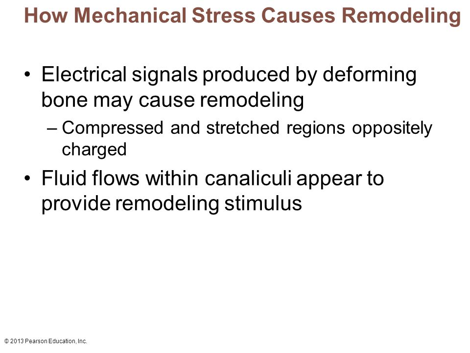 How Mechanical Stress Causes Remodeling