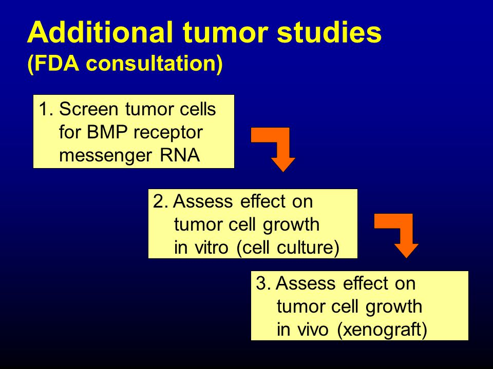 Additional tumor studies (FDA consultation)