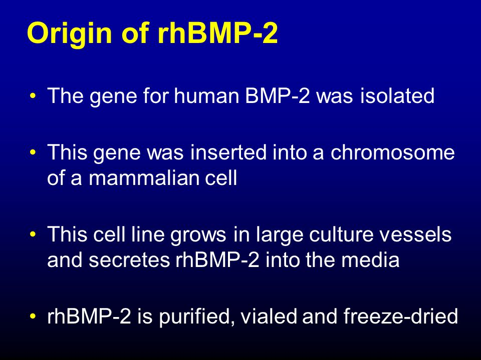 Origin of rhBMP-2 The gene for human BMP-2 was isolated
