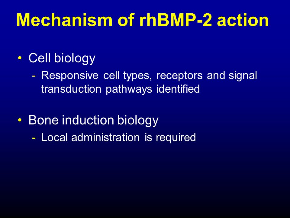 Mechanism of rhBMP-2 action