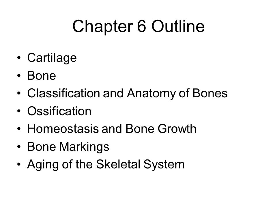 Chapter 6 Outline Cartilage Bone Classification and Anatomy of Bones