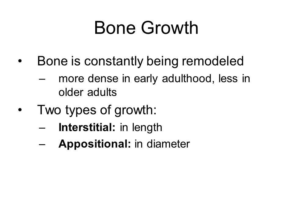 Bone Growth Bone is constantly being remodeled Two types of growth: