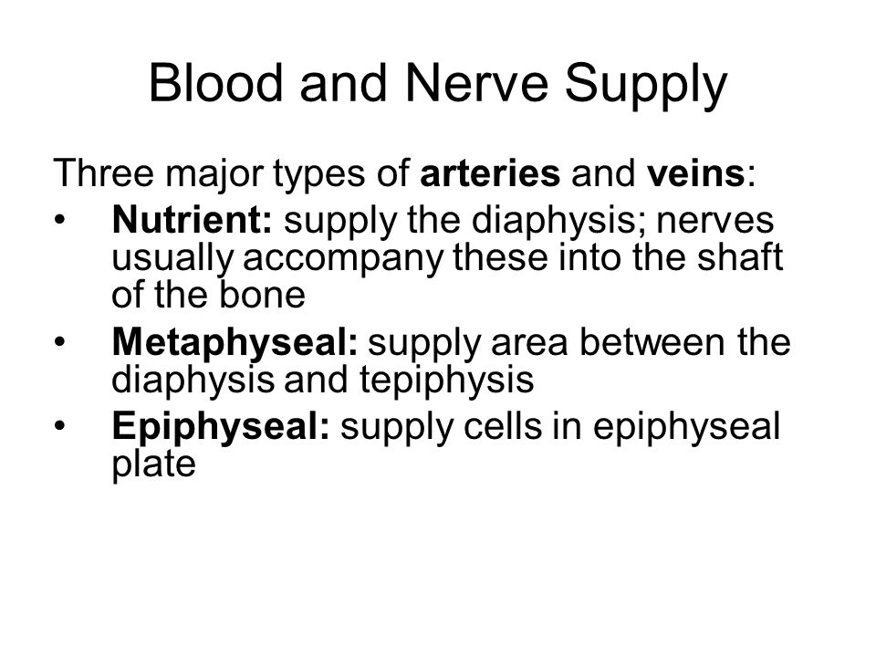 Blood and Nerve Supply Three major types of arteries and veins: