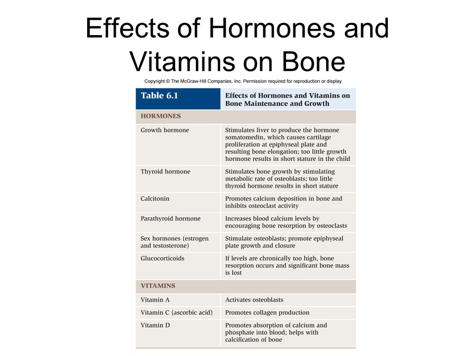 Effects of Hormones and Vitamins on Bone
