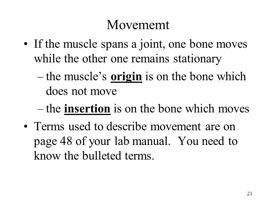 Movememt If the muscle spans a joint, one bone moves while the other one remains stationary. the muscle's origin is on the bone which does not move.
