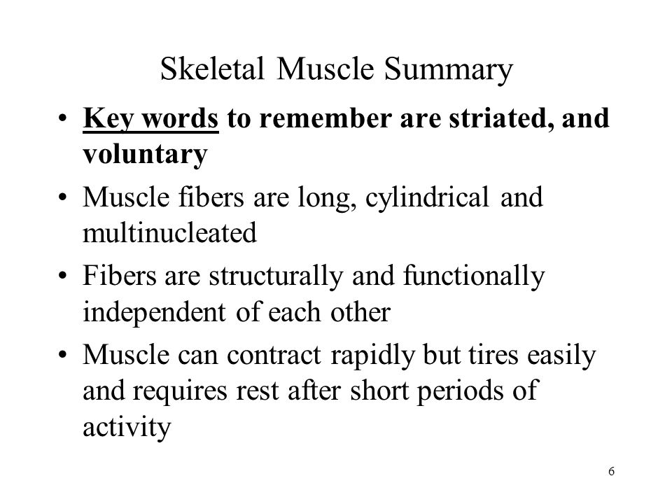 Skeletal Muscle Summary