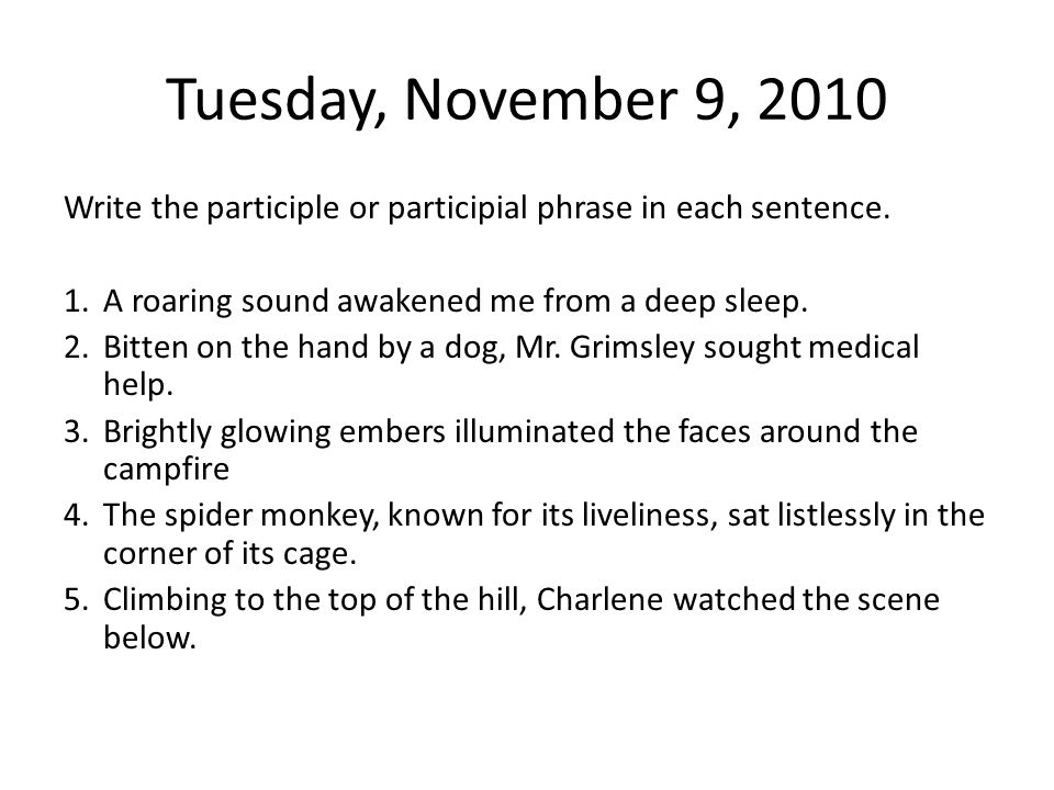 Tuesday, November 9, 2010 Write the participle or participial phrase in each sentence. A roaring sound awakened me from a deep sleep.