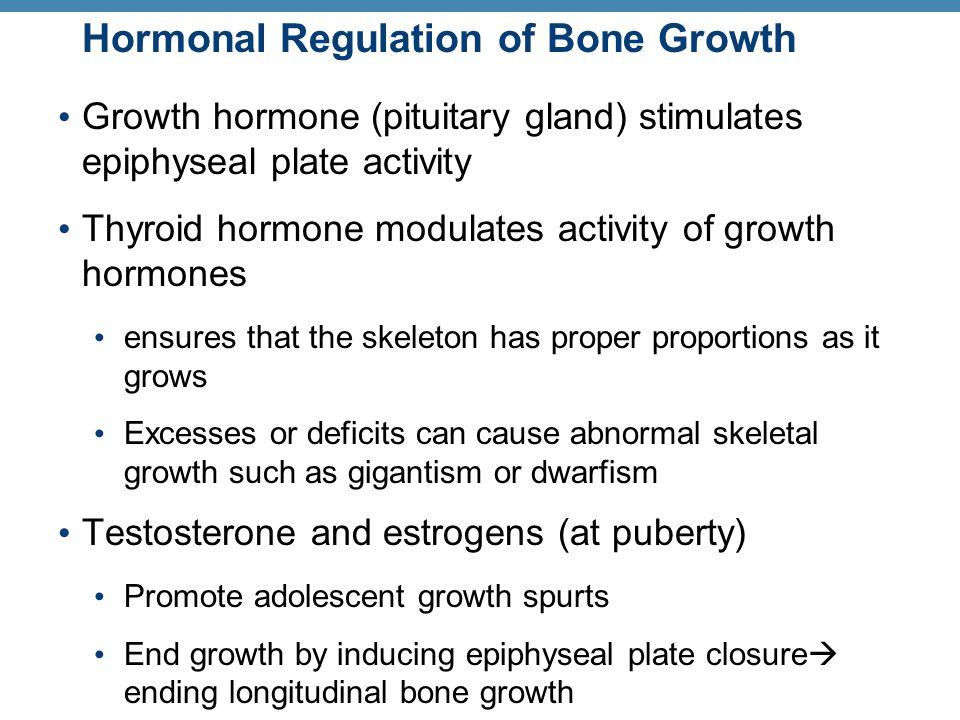 Hormonal Regulation of Bone Growth