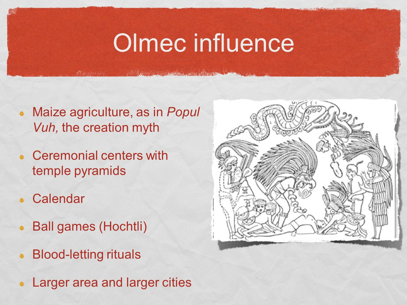 Olmec influence Maize agriculture, as in Popul Vuh, the creation myth