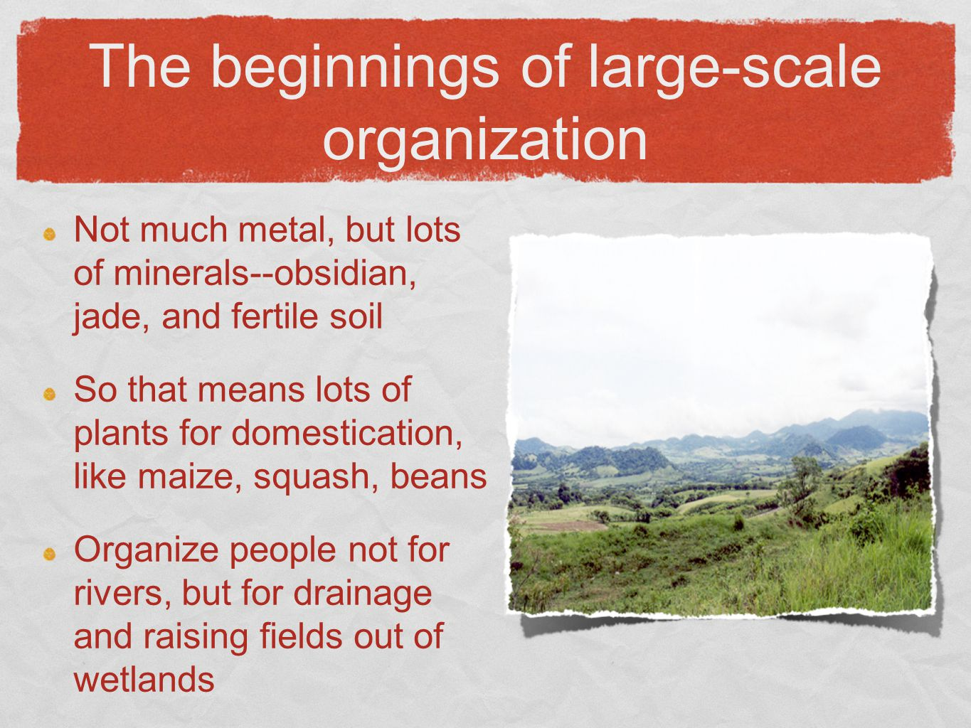 The beginnings of large-scale organization