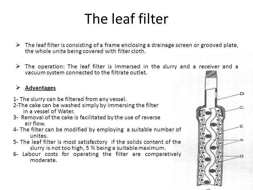The leaf filter