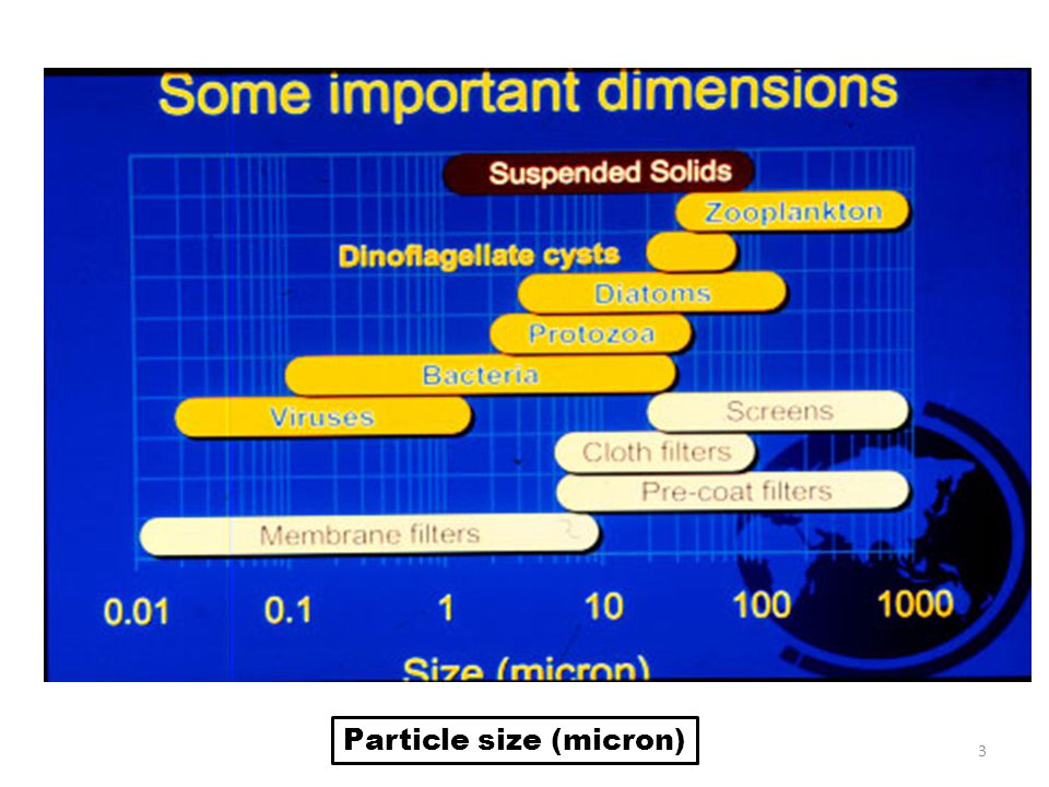 Particle size (micron)