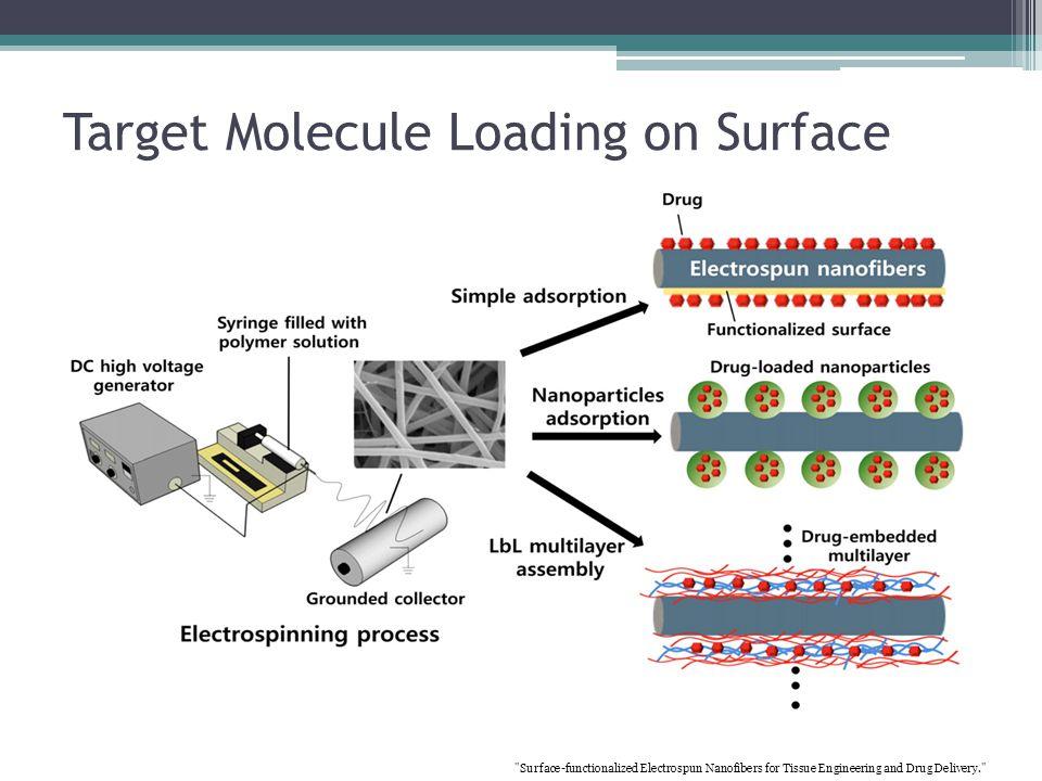Target Molecule Loading on Surface