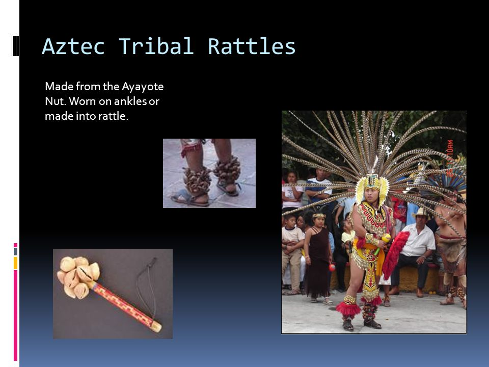 Aztec Tribal Rattles Made from the Ayayote Nut. Worn on ankles or made into rattle.