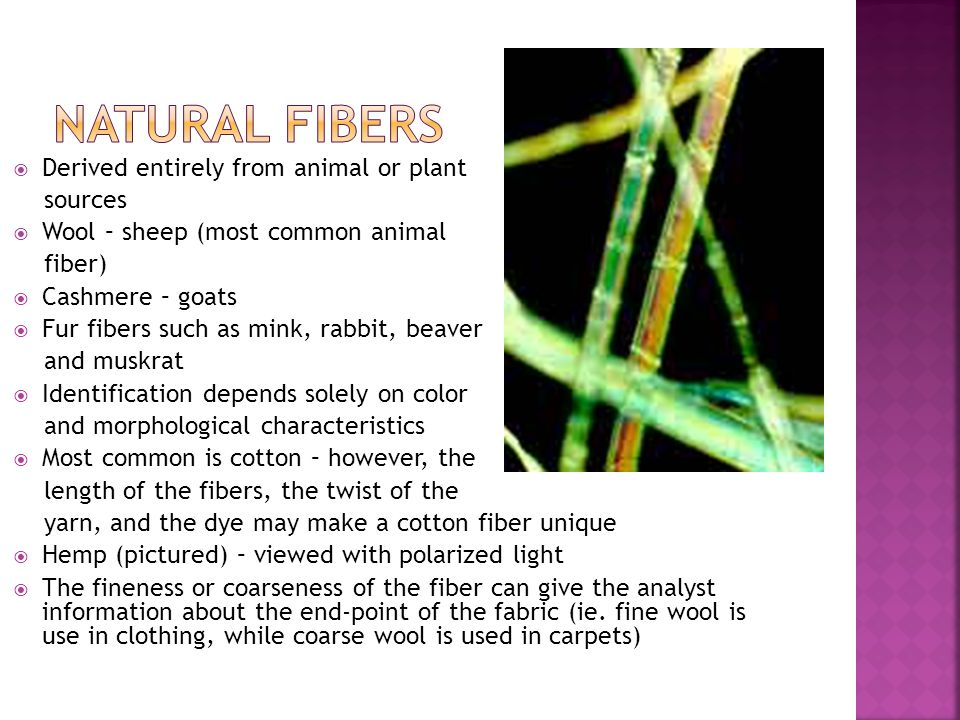 Natural Fibers Derived entirely from animal or plant sources